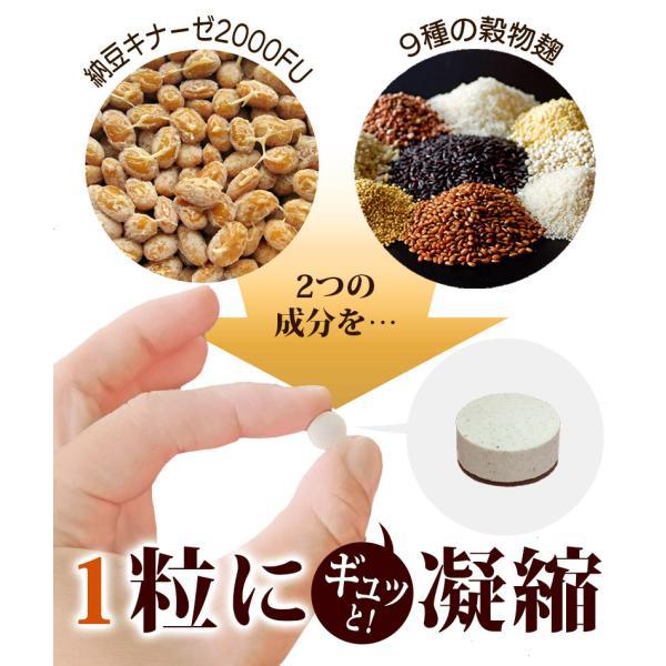 納豆サプリメント 熟生ナットウキナーゼ&レシチン 30粒 メール便発送|wakasugi2012|12