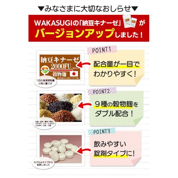 納豆サプリメント 熟生ナットウキナーゼ&レシチン 30粒 メール便発送|wakasugi2012|04