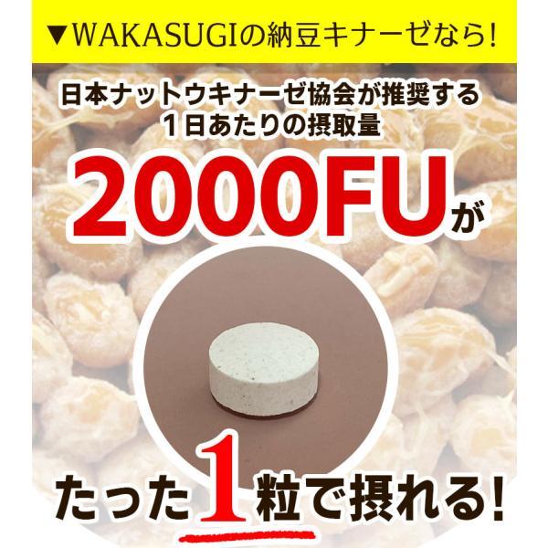 納豆サプリメント 熟生ナットウキナーゼ&レシチン 30粒 メール便発送|wakasugi2012|06