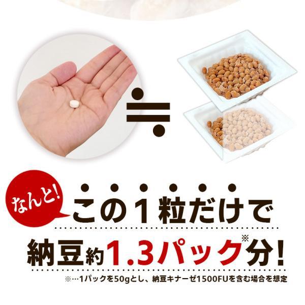 納豆サプリメント 熟生ナットウキナーゼ&レシチン 30粒 メール便発送|wakasugi2012|07