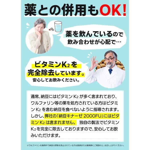 納豆サプリメント 熟生ナットウキナーゼ&レシチン 30粒 メール便発送|wakasugi2012|09