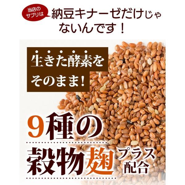 納豆サプリメント 熟生ナットウキナーゼ&レシチン 30粒 メール便発送|wakasugi2012|10