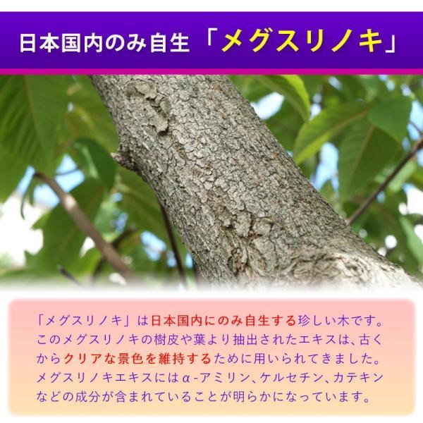 ビルベリー&ルテイン 60粒 3袋セット 合計180粒 コエンザイムQ10配合  メール便発送|wakasugi2012|11