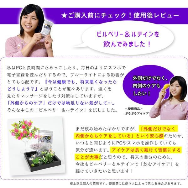 ビルベリー&ルテイン 60粒 3袋セット 合計180粒 コエンザイムQ10配合  メール便発送|wakasugi2012|14