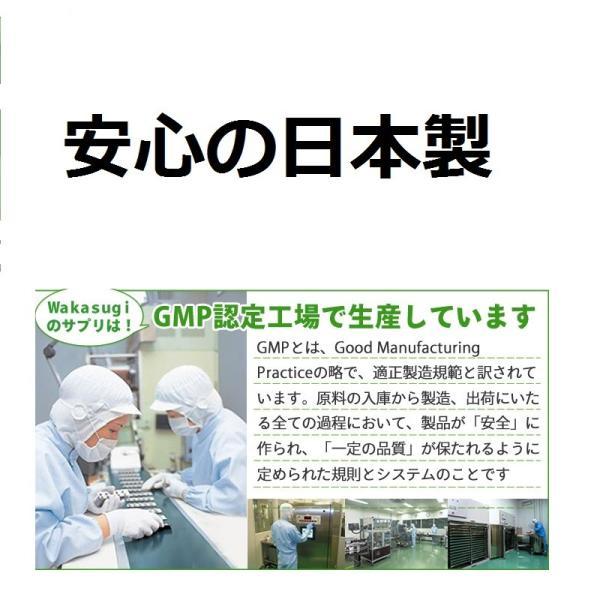 ビルベリー&ルテイン 60粒 3袋セット 合計180粒 コエンザイムQ10配合  メール便発送|wakasugi2012|16