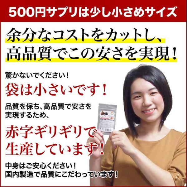 ビルベリー&ルテイン 60粒 3袋セット 合計180粒 コエンザイムQ10配合  メール便発送|wakasugi2012|03
