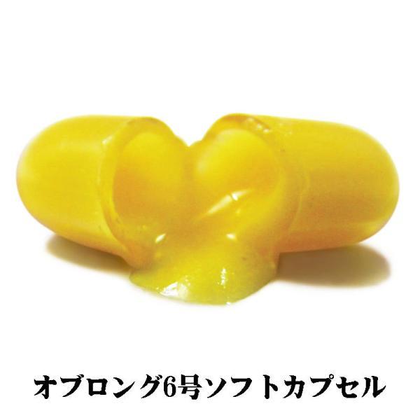 ふかひれコラーゲン&燕の巣エキス ソフトカプセル 30粒 |wakasugi2012|05