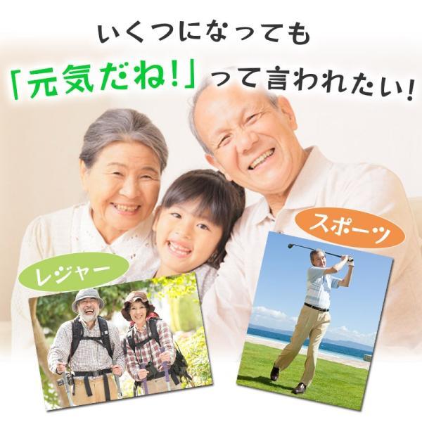 グルコサミン&コンドロイチン 90粒  メール便発送|wakasugi2012|04