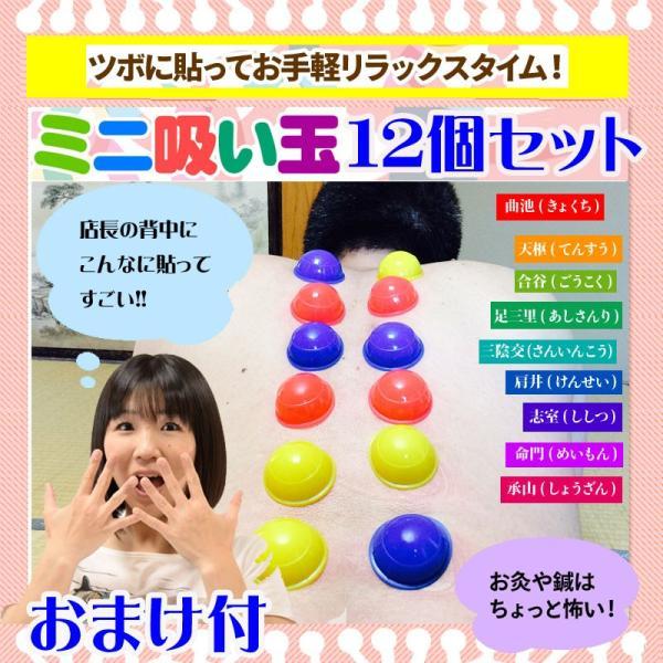 カッピング ミニ吸い玉 12個セット おまけ 磁気ネックウォーマー|wakasugi2012