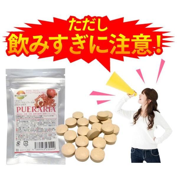 プリプリ プエラリア 60粒 83%配合 1粒当たりプエラリアミリフィカ末250mg配合 メール便発送  wakasugi2012 05