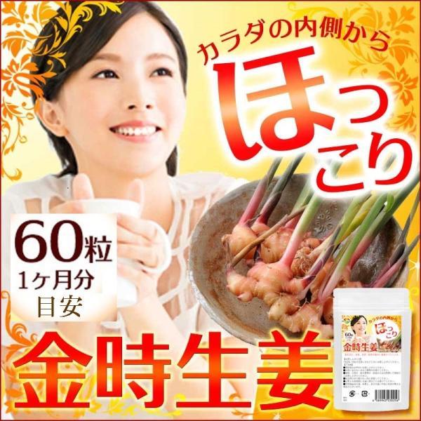金時 ショウガ サプリメント 60粒  メール便発送|wakasugi2012