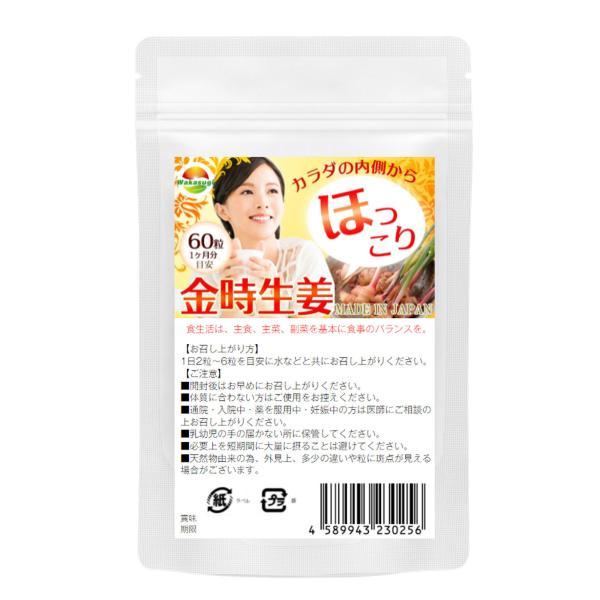 金時 ショウガ サプリメント 60粒  メール便発送|wakasugi2012|02