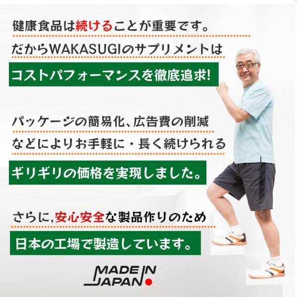 金時生姜 サプリメント 60粒  |wakasugi2012|12