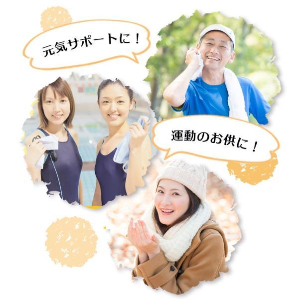 金時生姜 サプリメント 60粒  |wakasugi2012|13