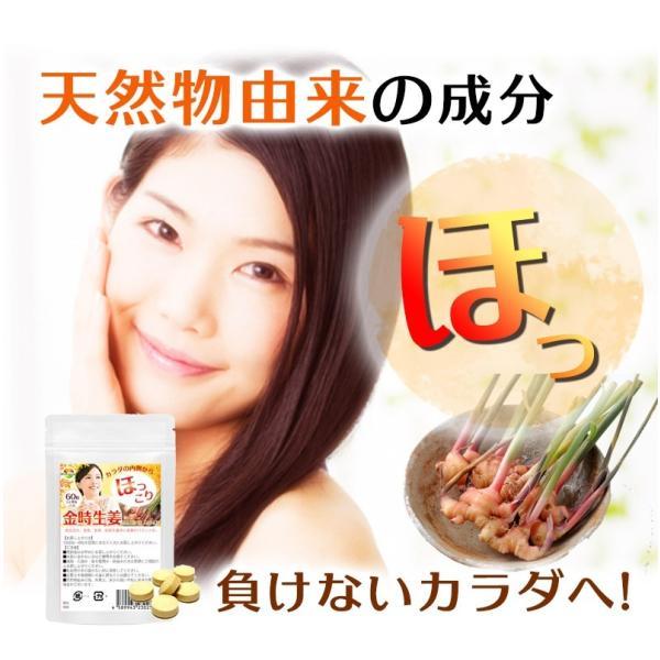金時生姜 サプリメント 60粒  |wakasugi2012|14