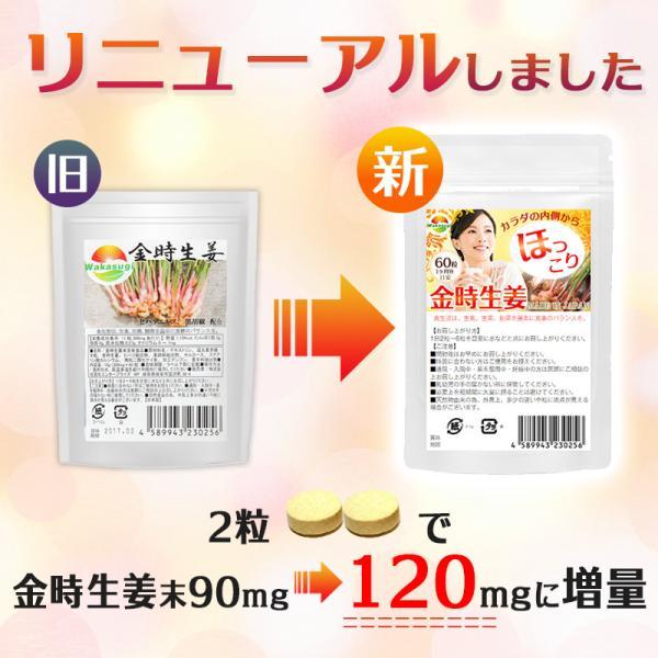 金時 ショウガ サプリメント 60粒  メール便発送|wakasugi2012|05