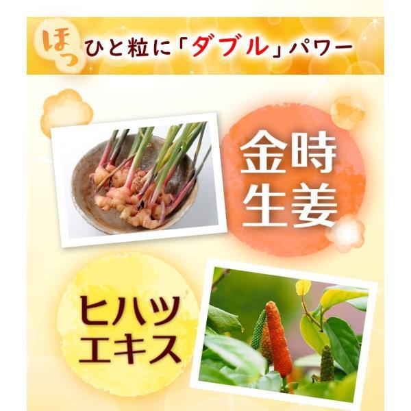 金時生姜 サプリメント 60粒  |wakasugi2012|08
