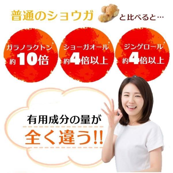 金時生姜 サプリメント 60粒  |wakasugi2012|10
