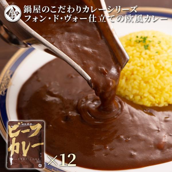 カレー 欧風 ビーフカレー (200g×12パック) 若杉 レトルト 欧風カレー ビーフ 牛カレー カレー鍋 スパイス 送料無料 ポイント消化 取り寄せ|wakasugi