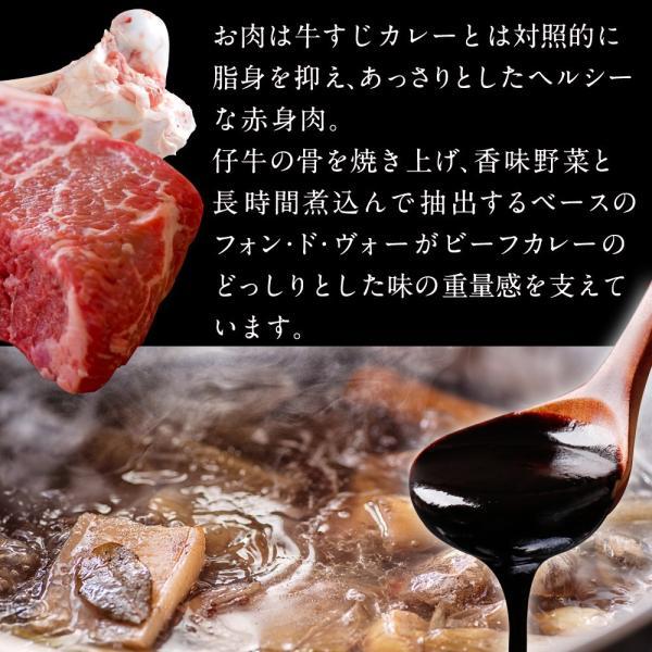 カレー 欧風 ビーフカレー (200g×12パック) 若杉 レトルト 欧風カレー ビーフ 牛カレー カレー鍋 スパイス 送料無料 ポイント消化 取り寄せ|wakasugi|04
