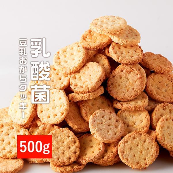乳酸菌入り 豆乳おからクッキー ハードタイプ 500g(1袋) 訳あり食品 わけあり スイーツ メール便A TSG TN wakeariya
