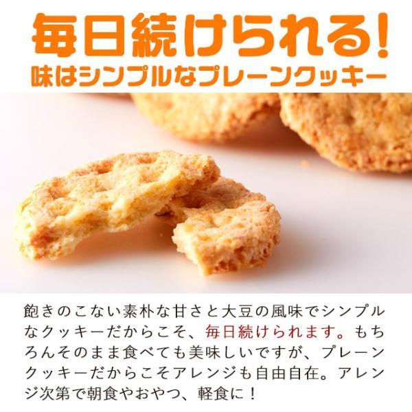 乳酸菌入り 豆乳おからクッキー ハードタイプ 500g(1袋) 訳あり食品 わけあり スイーツ メール便A TSG TN wakeariya 11