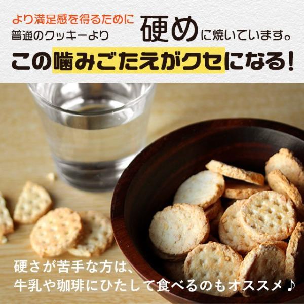 乳酸菌入り 豆乳おからクッキー ハードタイプ 500g(1袋) 訳あり食品 わけあり スイーツ メール便A TSG TN wakeariya 12