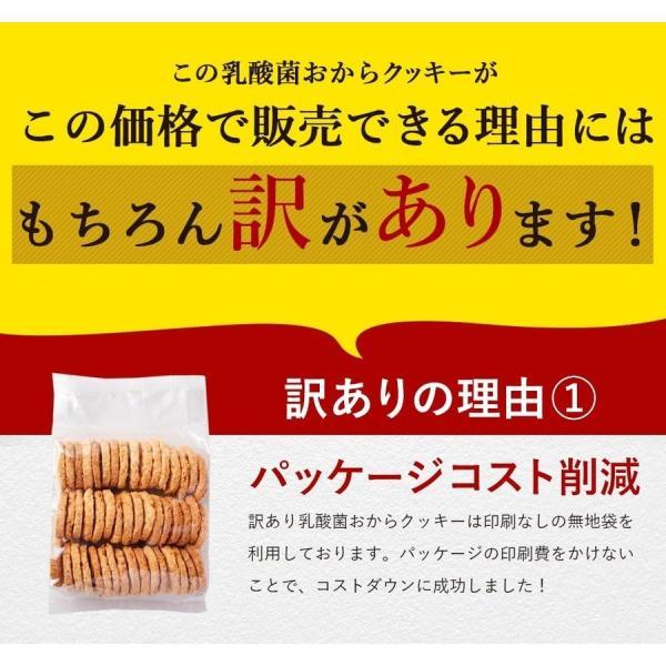 乳酸菌入り 豆乳おからクッキー ハードタイプ 500g(1袋) 訳あり食品 わけあり スイーツ メール便A TSG TN wakeariya 13
