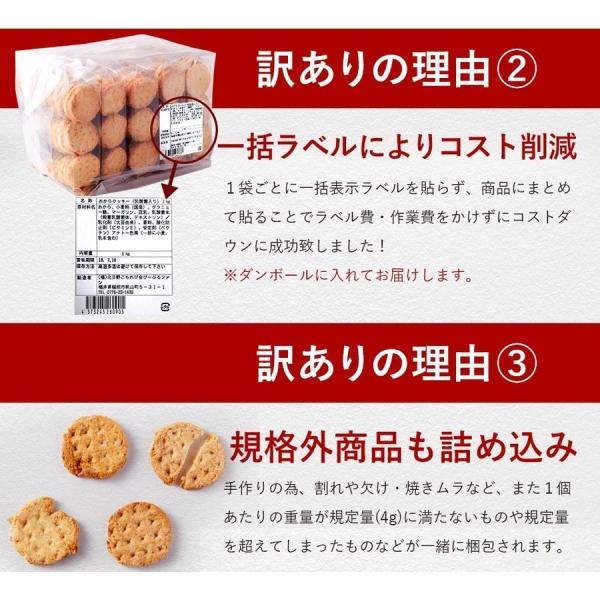 乳酸菌入り 豆乳おからクッキー ハードタイプ 500g(1袋) 訳あり食品 わけあり スイーツ メール便A TSG TN wakeariya 14