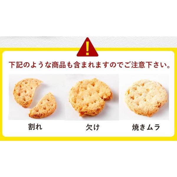 乳酸菌入り 豆乳おからクッキー ハードタイプ 500g(1袋) 訳あり食品 わけあり スイーツ メール便A TSG TN wakeariya 15