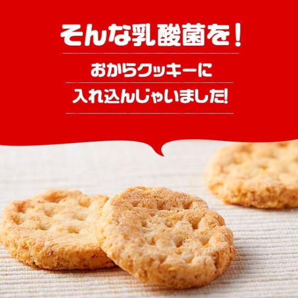 乳酸菌入り 豆乳おからクッキー ハードタイプ 500g(1袋) 訳あり食品 わけあり スイーツ メール便A TSG TN wakeariya 05