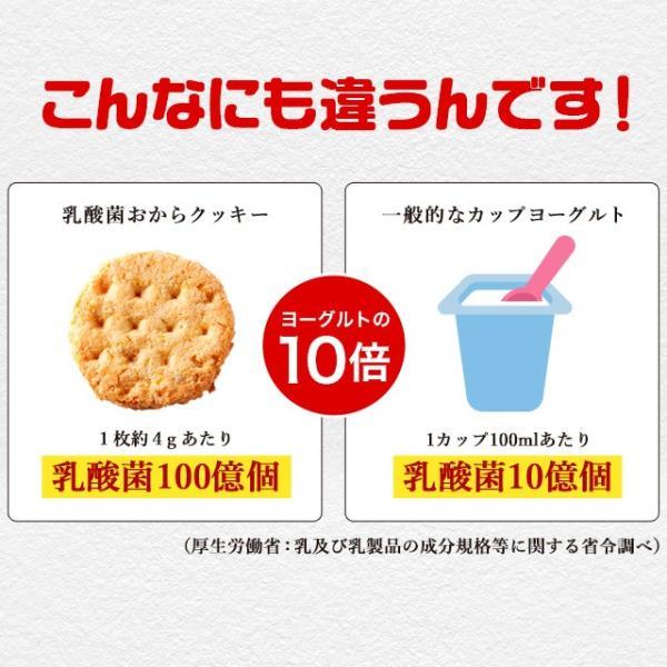 乳酸菌入り 豆乳おからクッキー ハードタイプ 500g(1袋) 訳あり食品 わけあり スイーツ メール便A TSG TN wakeariya 07