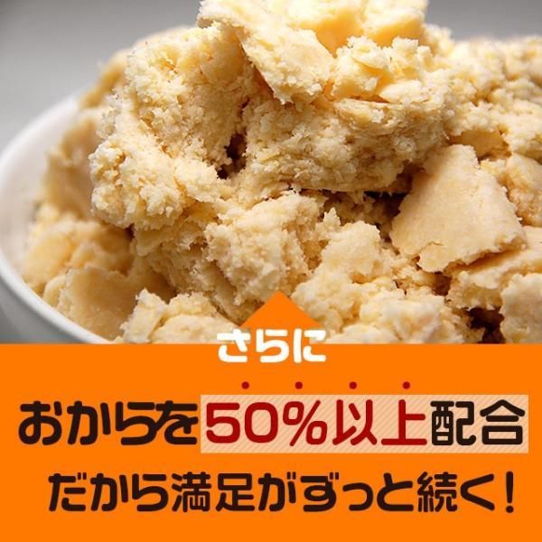 乳酸菌入り 豆乳おからクッキー ハードタイプ 500g(1袋) 訳あり食品 わけあり スイーツ メール便A TSG TN wakeariya 09