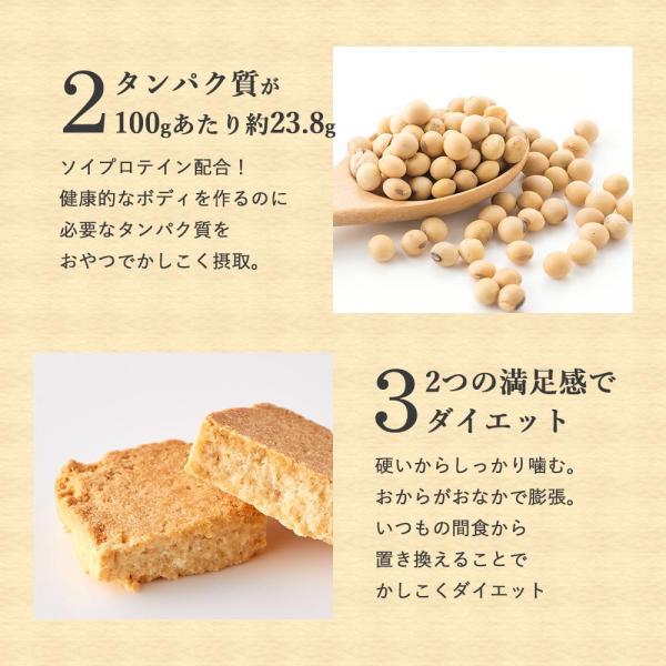 プロテイン 豆乳 おからクッキー チャック付き 500g (500g×1袋) 訳あり食品 わけあり スイーツ メール便A TSG TN wakeariya 15