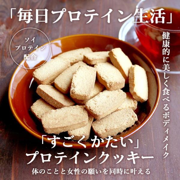 プロテイン 豆乳 おからクッキー チャック付き 500g (500g×1袋) 訳あり食品 わけあり スイーツ メール便A TSG TN wakeariya 17