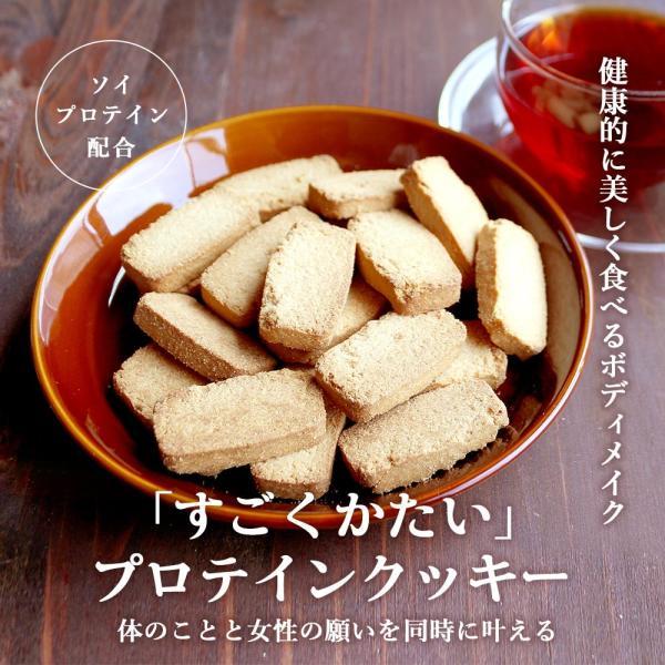 プロテイン 豆乳 おからクッキー チャック付き 500g (500g×1袋) 訳あり食品 わけあり スイーツ メール便A TSG TN wakeariya 03