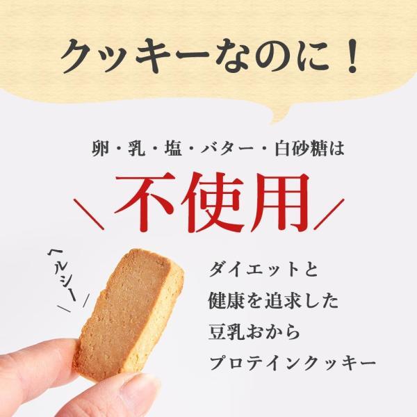 プロテイン 豆乳 おからクッキー チャック付き 500g (500g×1袋) 訳あり食品 わけあり スイーツ メール便A TSG TN wakeariya 05