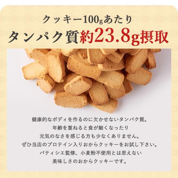 プロテイン 豆乳 おからクッキー チャック付き 500g (500g×1袋) 訳あり食品 わけあり スイーツ メール便A TSG TN wakeariya 07