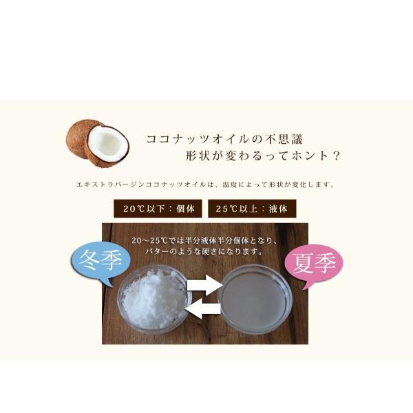 ココナッツオイル 送料無料 即納 有機JAS認定のオーガニック100% エキストラバージン ココナッツオイル 240g フィリピン産ココナッツ使用|wakita-m-euglena|05