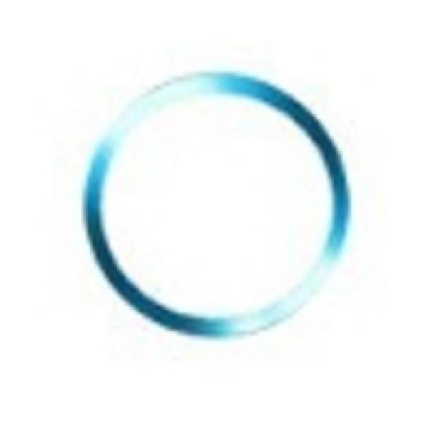 iPhone ホームボタンシール ホームボタンカバー 指紋認証 TOUCH ID アルミ ホームボタン|wakufuri|16