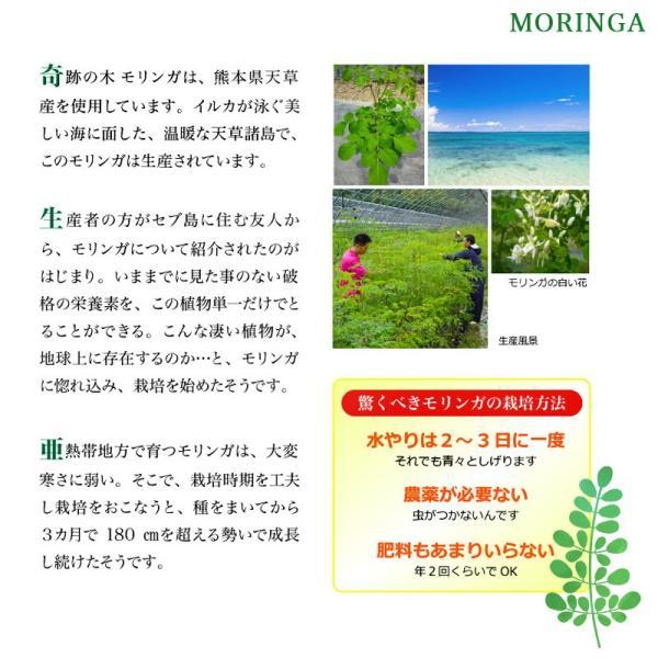 サプリメント モリンガ15日分 ビタミン 食物繊維 健康でいたい方へ wakuwakukenkouclub 03