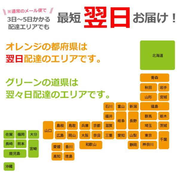 お急ぎ便サービスチケット wallstickershop 03