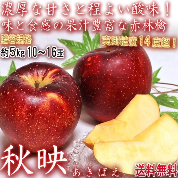 秋映 あきばえ 赤りんご 約5kg 10〜15玉 長野・青森県産 贈答規格 濃厚な甘さと程よい酸味!果汁豊富な美味しい赤林檎