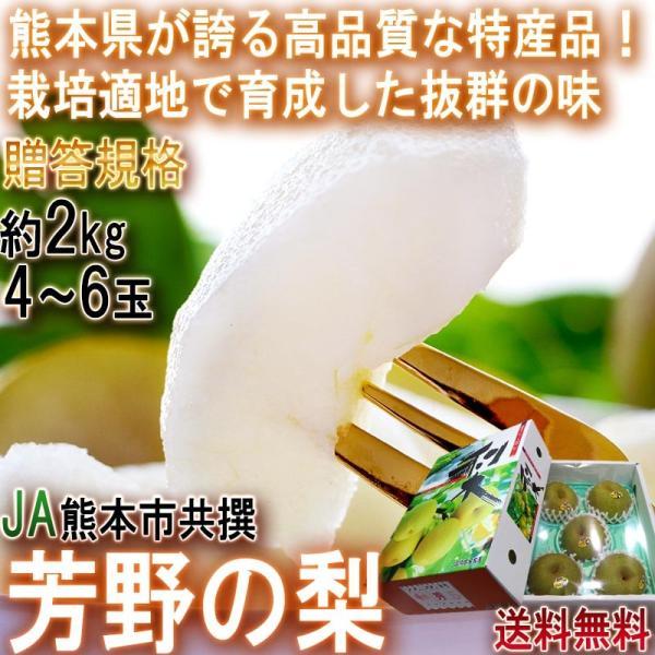 芳野の梨 幸水 約2kg 4〜6玉 熊本県産 贈答規格 JA熊本市共撰 豊富な果汁と甘さでお中元に人気の特産品!高い栽培技術で確かな美味しさ