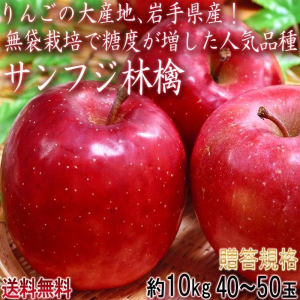 サンふじ林檎 約10kg 40〜50玉 小玉 早生りんご 岩手県産 無袋栽培で糖度が向上した早生フジ!強い甘みと程よい酸味