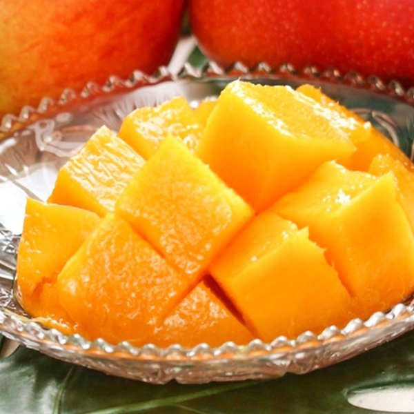 完熟マンゴー 1玉入り L〜3Lサイズ 佐賀県産 贈答規格 温室栽培 抜群の味と甘さの高級フルーツ!
