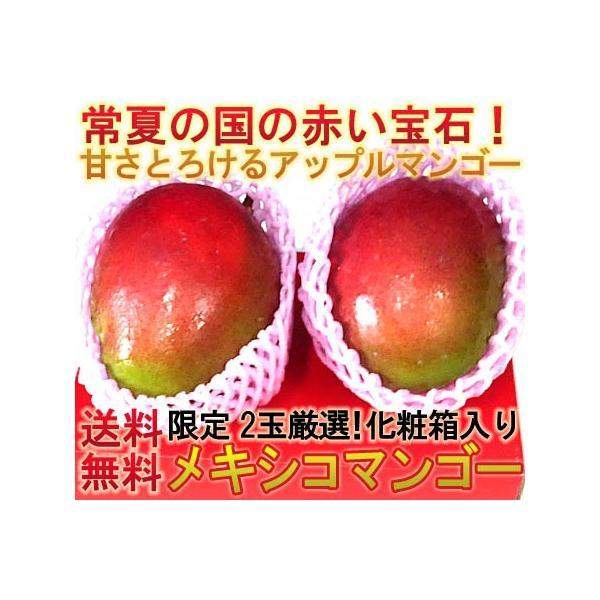アップルマンゴー メキシコ産・ブラジル産・ペルー産 2玉 化粧箱入り 本場の味わい!甘み溢れる南国フルーツ!