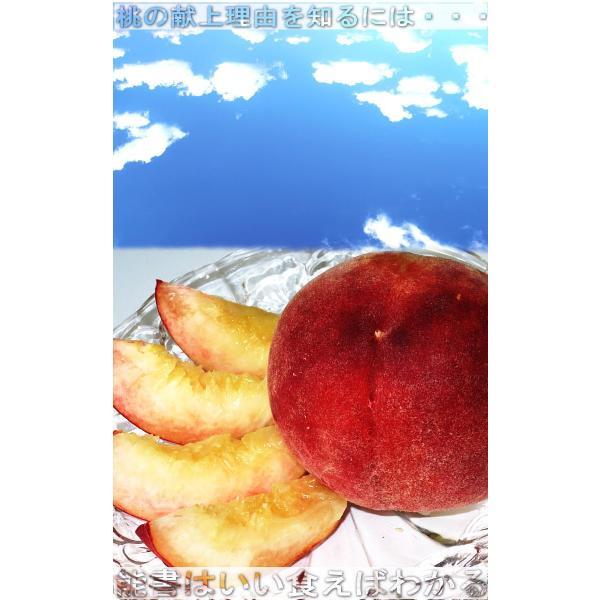 ミスピーチ 桃 約5kg 15〜22玉 福島県産 贈答規格 JA全農ふくしま 高品質な旬のモモをお届け!光センサー選果 ふくしまプライド。体感キャンペーン|wamers|03