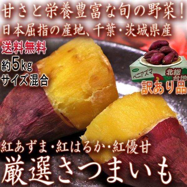 紅あずま・紅はるか・紅ゆうか さつまいも 約5kg 千葉県・茨城県産 訳あり品 濃厚な味と栄養豊富な旬の野菜!甘み溢れる薩摩芋をお届け