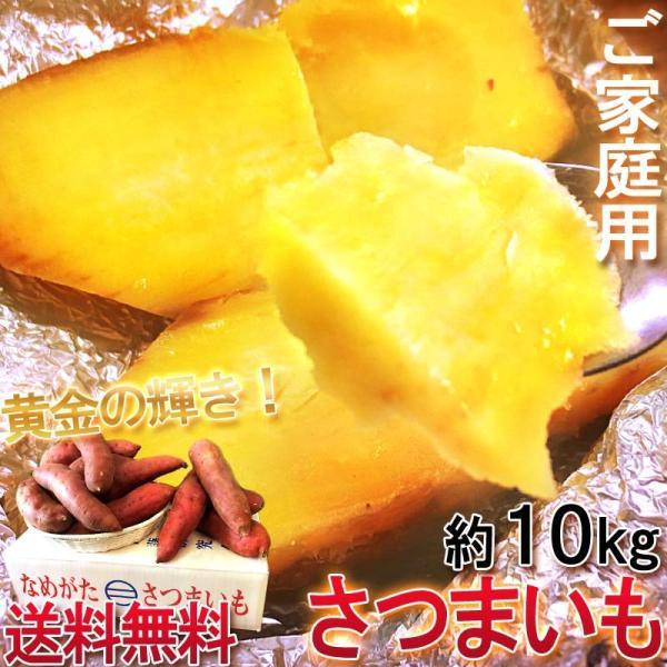 紅あずま・紅はるか・紅ゆうか さつまいも 約10kg 千葉県・茨城県産 訳あり品 濃厚な味と栄養豊富な旬の野菜!甘み溢れる薩摩芋をお届け
